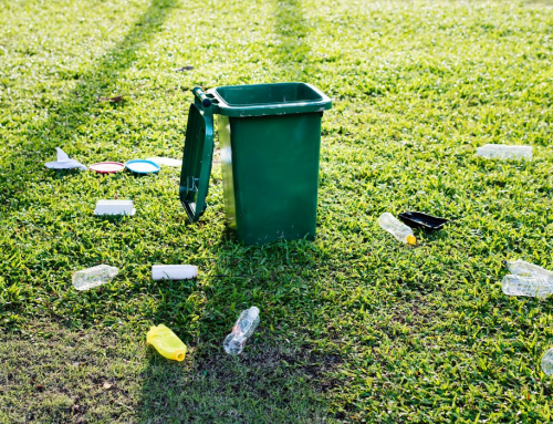 Use These Tips to Make Your Home Rubbish-Free with Little Effort